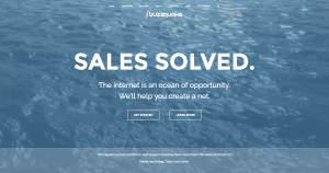 Buzzquake Marketing - Web Design in Howard County, Columbia, Ellicott City