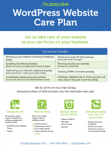 Buzzquake WordPress Website Care Plan